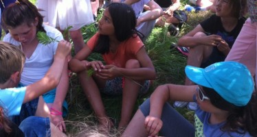 Les élèves de CE2/CM1 étudient la faune et la flore de la prairie Boudoux