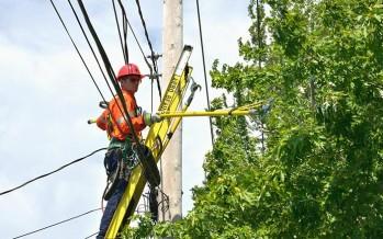 Travaux de végétation nécessaires à l'entretien des lignes électriques HTB