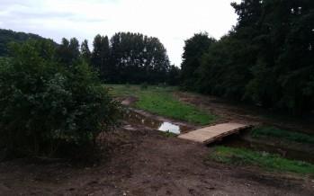 Découverte du chantier du jardin d'eau