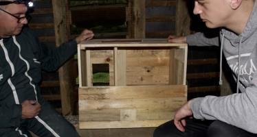 Présentation et installation du nichoir pour chouette