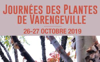 Journées des plantes 2019 de Varengeville